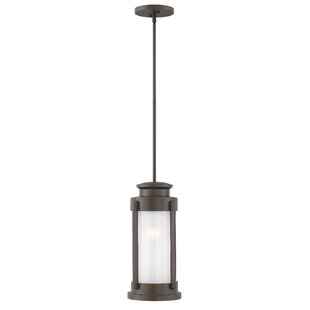 Brayden Studio Provencher 1-Light Outdoor Mini Pendant