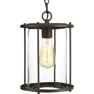 Madsen 1-Light Outdoor Hanging Lantern
