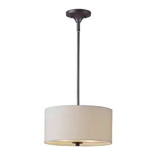 Darby Home Co Keesler 2-Light Drum Pendant