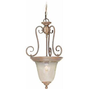 Volume Lighting Rhodes 1-Light Urn Pendant