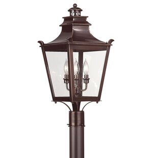 Theodore 3-Light Lantern Head with Bronze by Darby Home Co