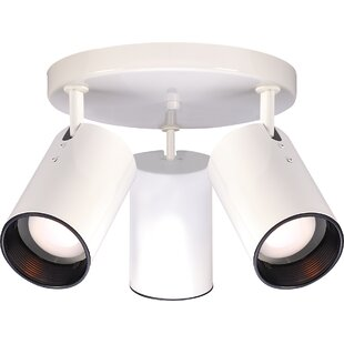 Chabot 3-Light Directional & Spotlight