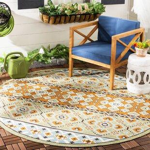 Serrano Green/Orange Indoor/Outdoor Area Rug by World Menagerie