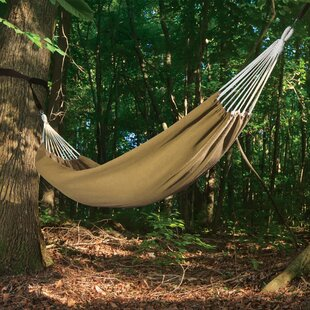 Raybon Polyester Camping Hammock by Loon Peak