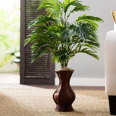 Areca Palm Floor Plant in Urn Beachcrest Home