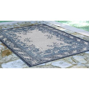 Arverne Aubusson Navy Indoor/Outdoor Area Rug