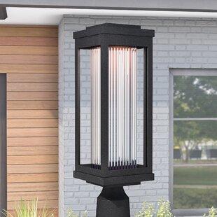 Cavazos Classic Outdoor 1-Light LED Lantern Head by Latitude Run