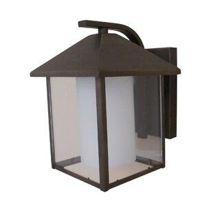 Whitfield Lighting Aamina 1-Light Outdoor Wall Lantern