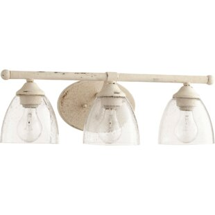 Three Posts Hewlett 3-Light Vanity Light