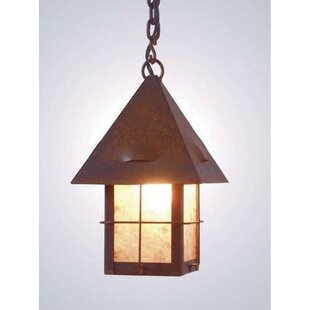 Find Lapaz 1-Light Outdoor Hanging Lantern By Steel Partners