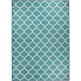 Moroccan Teal Indoor/Outdoor Accent Rug