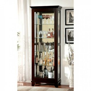 Darby Home Co Fackler Curio Cabinet