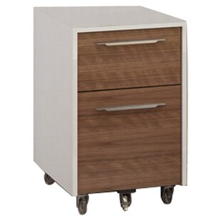 Format 2-Drawer Mobile Filing Cabinet by BDI Best