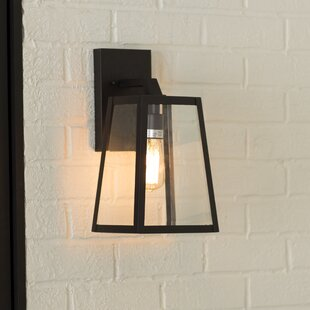 Mercury Row Brill Outdoor Wall Lantern