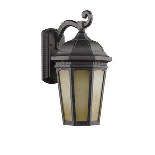 Borden 1-Light Transitional Outdoor Wall Lantern