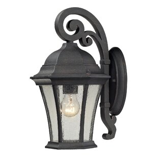 Darby Home Co Regner 1-Light Outdoor Wall Lantern