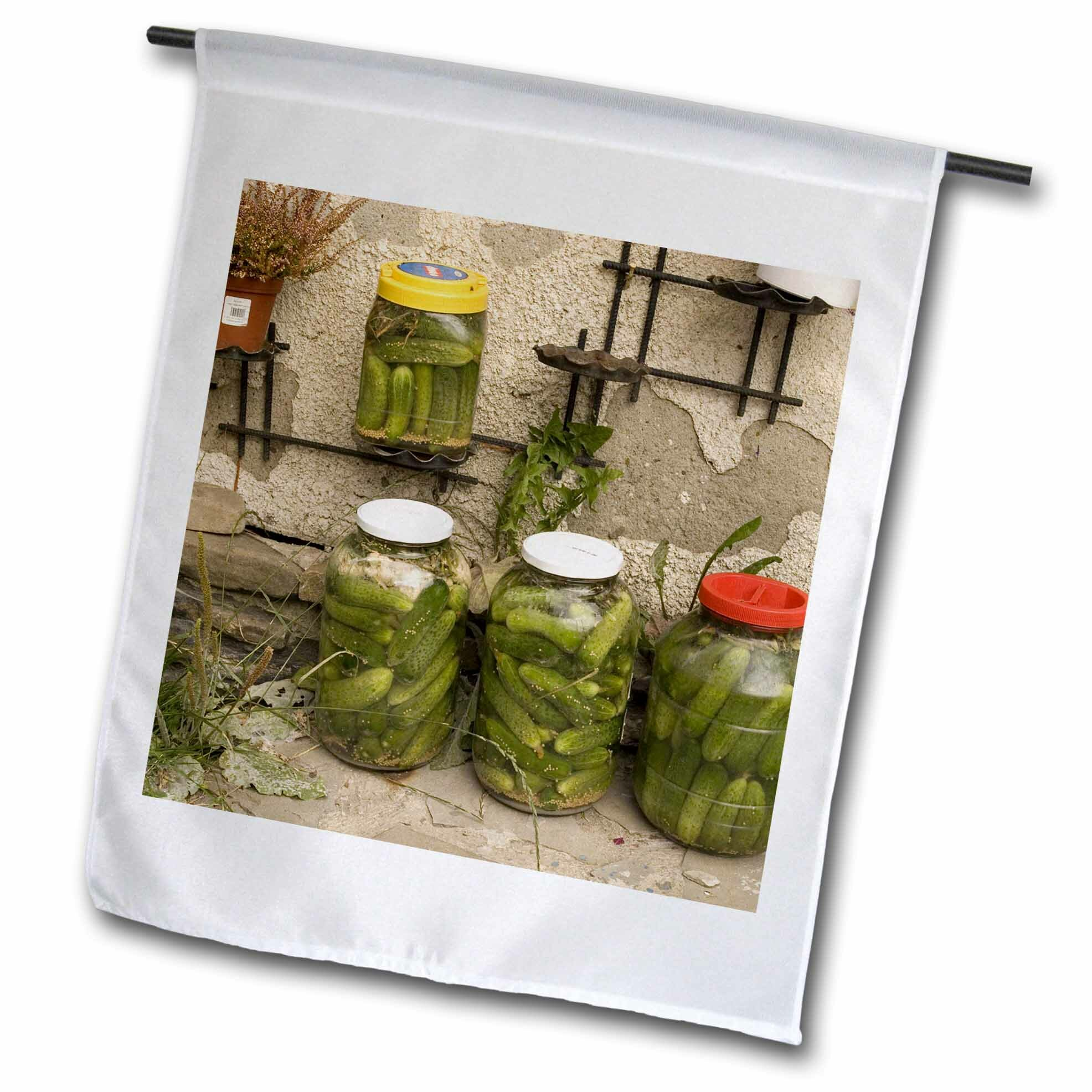 3drose Preserved Vegetables Canning Polyester 18 X 12 In Garden Flag Wayfair