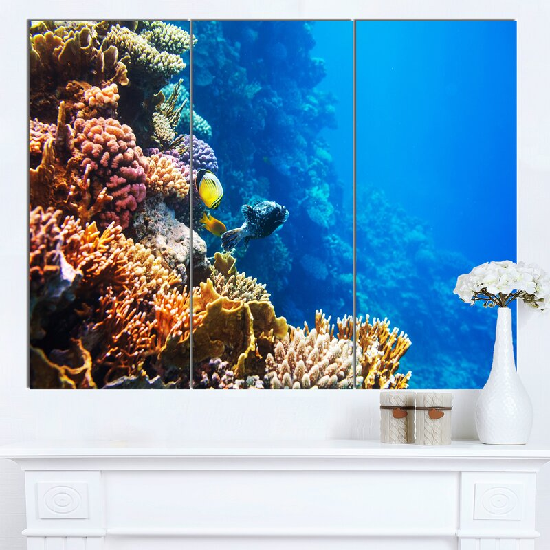 Designart Beautiful Coral Fish Of Red Sea 3 Piece Photographic Print On Wrapped Canvas Set