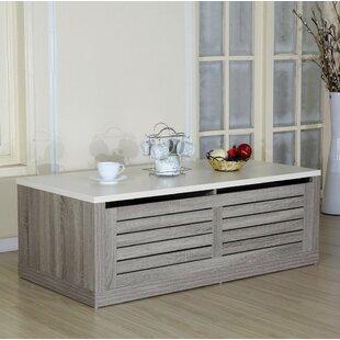 Denisha Block Coffee Table with Storage