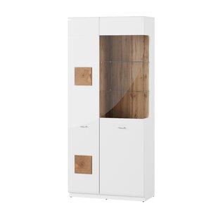 Saltzman 2 Door Display Cabinet By Mercury Row