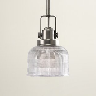 Beachcrest Home Gotha 1-Light Mini Pendant