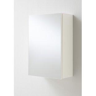 40cm X 61.5cm Surface Mount Flat Mirror Cabinet By Brayden Studio