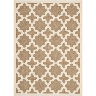 Clarksburg Brown/Beige Indoor/Outdoor Area Rug