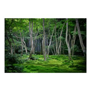 Japanese Forest 2.25m x 336cm Wallpaper by PPS. Imaging GmbH