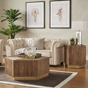 Everly Quinn Kershner 2 Piece Coffee Table Set