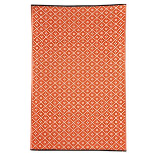 Kennedy Orange Outdoor Rug by Riley Ave.