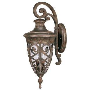 Astoria Grand Dunamoy 3-Light Outdoor Wall Lantern