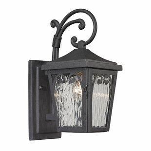 Fleur De Lis Living Bearman 1-Light Outdoor Wall Lantern