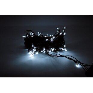 The Holiday Aisle Sadowa Fairy String Lights
