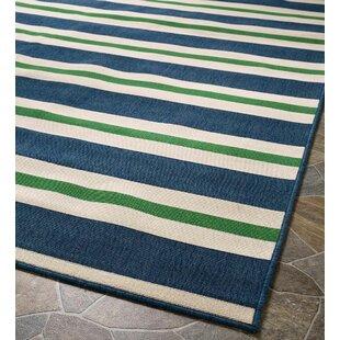 Lexington Blue Indoor/Outdoor Area Rug by Plow & Hearth