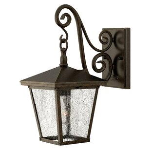 Trellis 1 Light Outdoor Wall Lantern