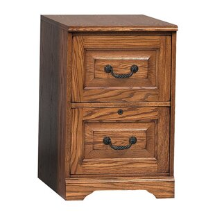 Review Southview 2-Drawer Vertical Filing Cabinet by Darby Home Co