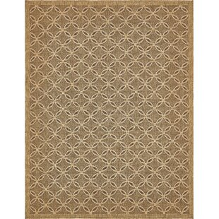 Dominick Light Brown Outdoor Area Rug By Sol 72 Outdoor