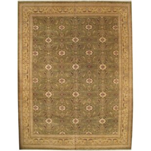 Compare prices Indo Hand-Knotted Wool Light Green/Gold Area Rug ByPasargad NY