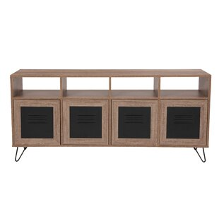 Eloisa 4 Door Accent Cabinet