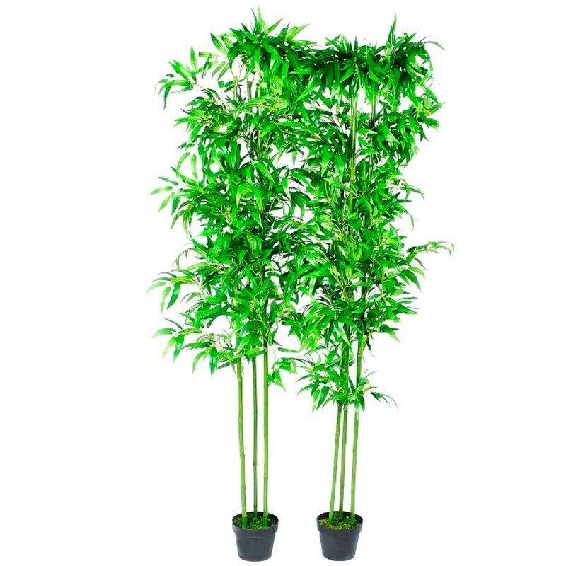 World Menagerie Bamboo Tree In Pot Wayfair