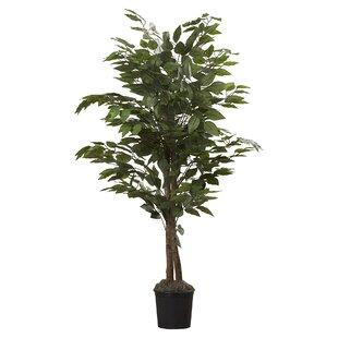 Faux Plants Trees Birch Lane