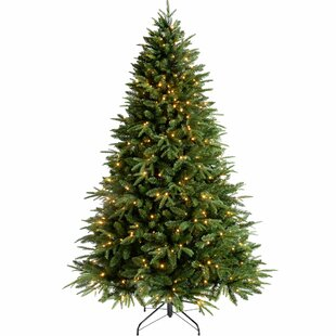 windsor pre lit multi function 7ft green fir artificial christmas tree with warm white lights