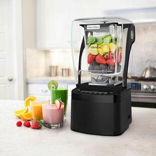 Professional 800 Blender-Wildside