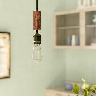 Davidson 1-Light Bulb Pendant by Trent Austin Design