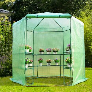 Wang 3-Tier Mini Greenhouse By Sol 72 Outdoor