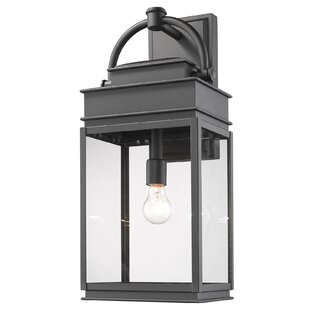 Fulton 1-Light Outdoor Wall Lantern by Artcraft Lighting
