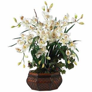 Large flower arrangements youll love wayfair large cymbidium silk flowers in white mightylinksfo