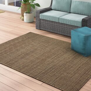 Stem Bridge Chestnut Brown Indoor Outdoor Area Rug