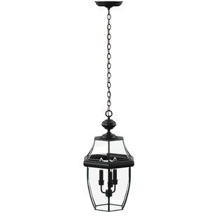 Charlton Home Brawner Large 3-Light Outdoor Hanging Lantern