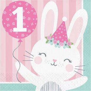 Mckee Bunny Party 1st Birthday 6.5
